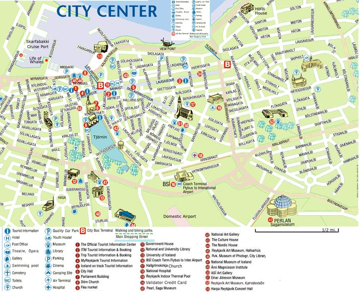 free guided walking tour reykjavik