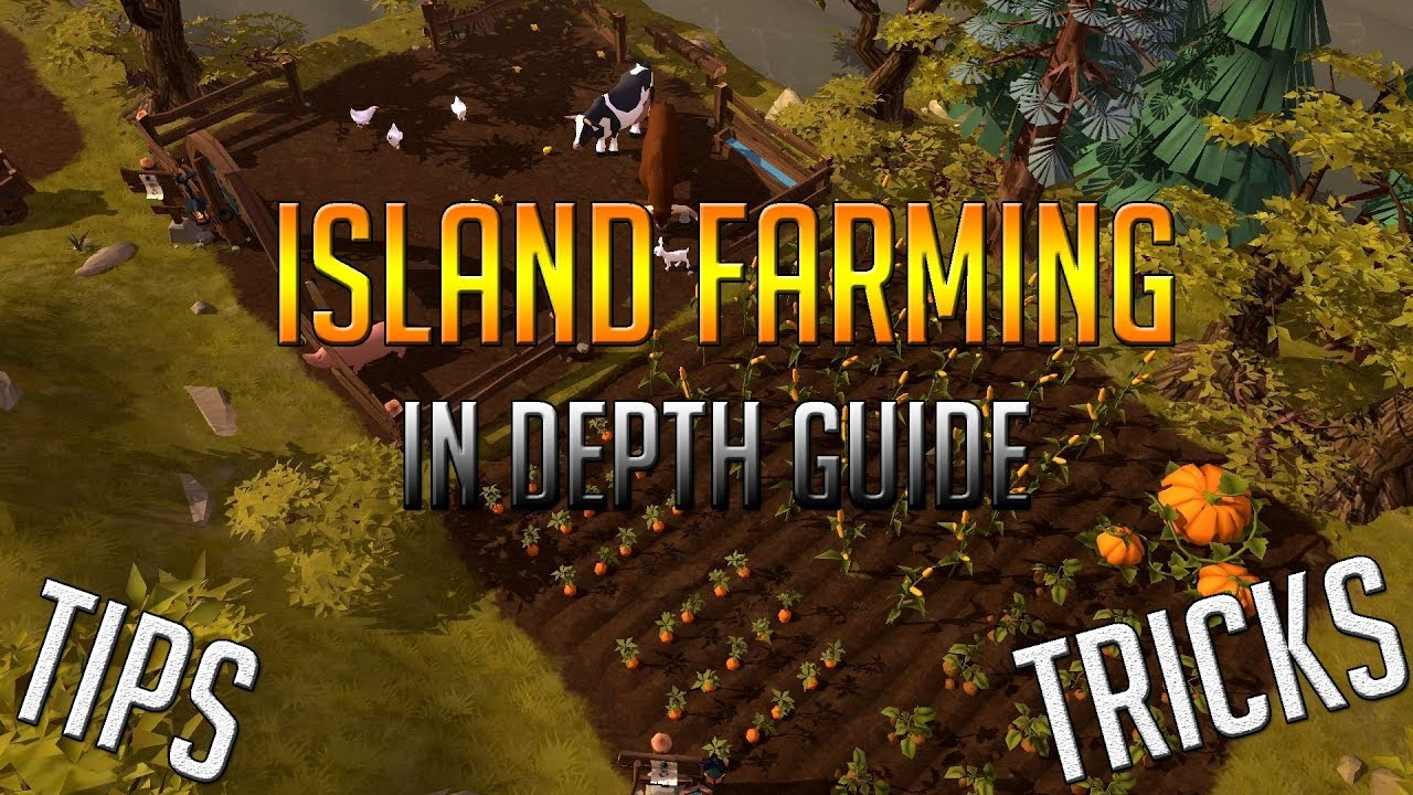 albion online guild island guide